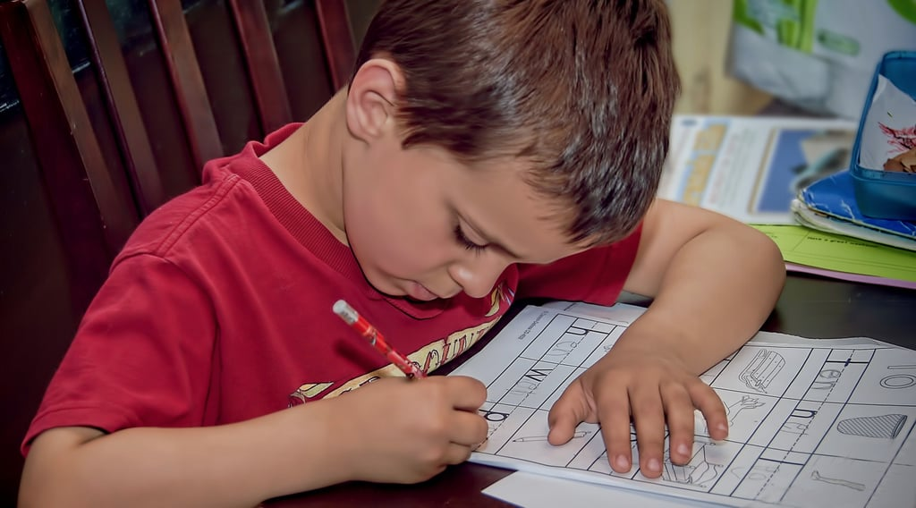 Worksheets and Flash Cards